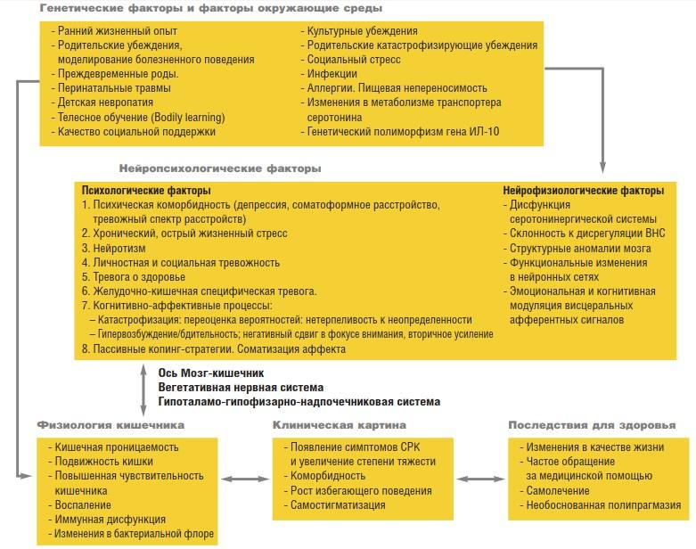 Биопсихосоциальная модель синдрома раздраженного кишечника Л. Ван Оуданхова